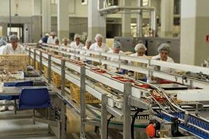 خط تولید کنسرو ماهی