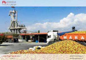 خط تولید آبمیوه